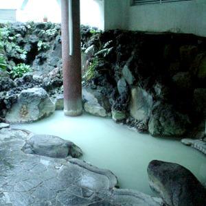 強羅温泉 国民宿舎箱根太陽山荘(神奈川県)