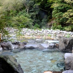 奥湯本温泉 雉子亭 豊栄荘(神奈川県)