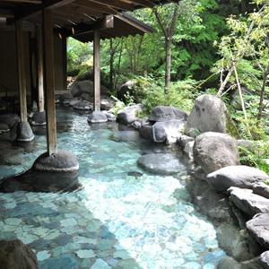 湯ヶ島温泉 あせび野(静岡県)