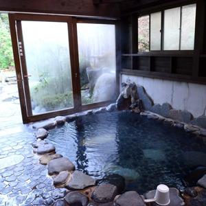 湯ヶ島温泉 テルメいづみ園(静岡県)