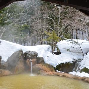 平湯温泉 平湯民族館 平湯の湯(岐阜県)